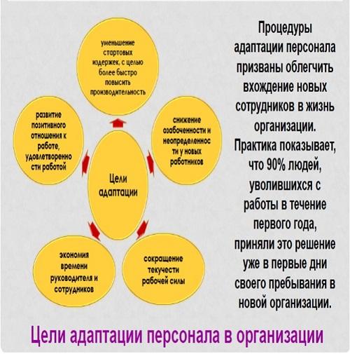 Цели адаптации персонала в