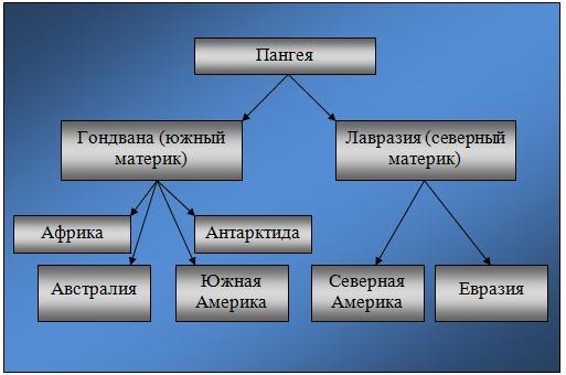 Схема происхождения